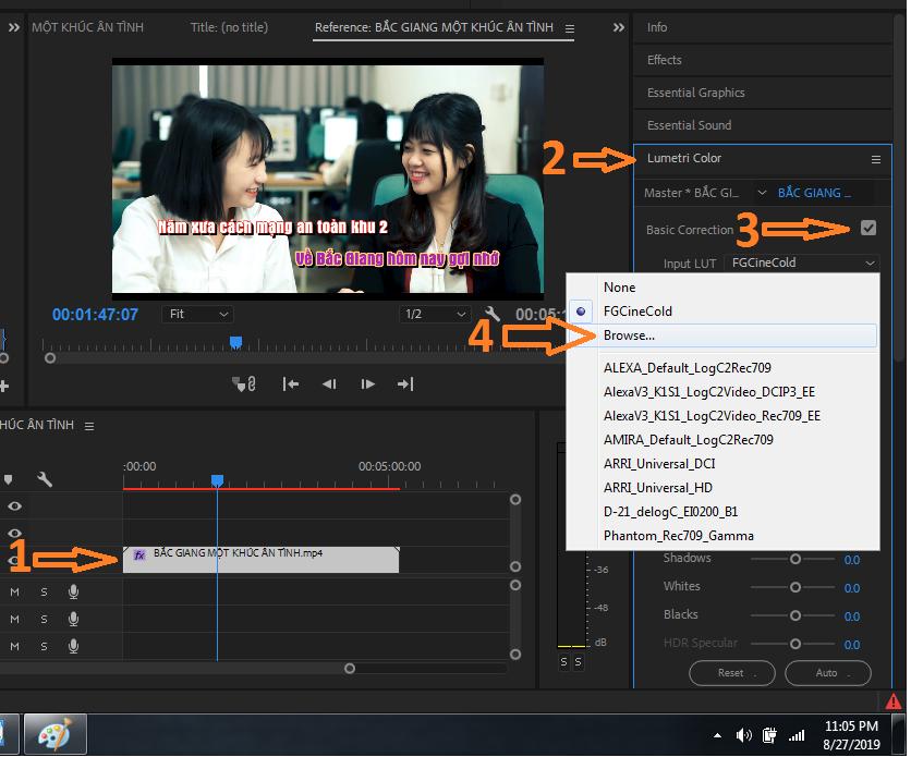 Dương vitadu premiere chèn luts vào video